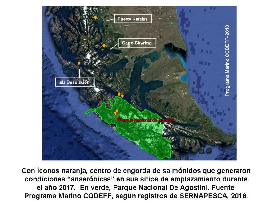 2 Anaeróbicos 202017 Magallanes.jpg